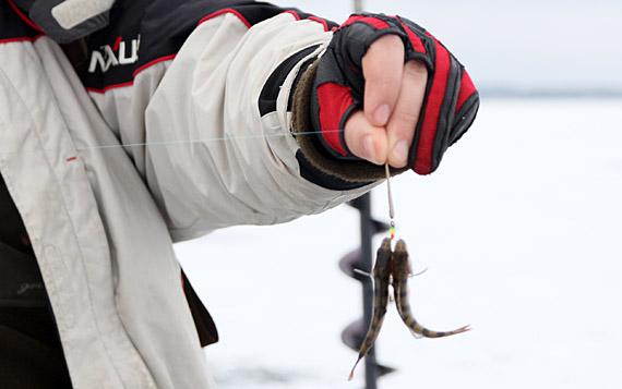 Подледная рыбалка в липецкой области